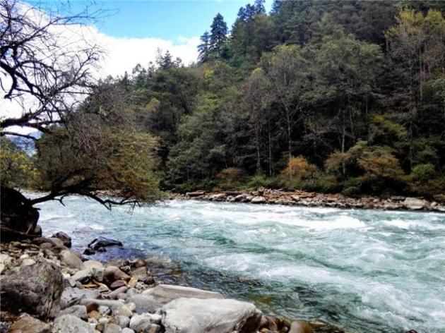 藏区风景动态图