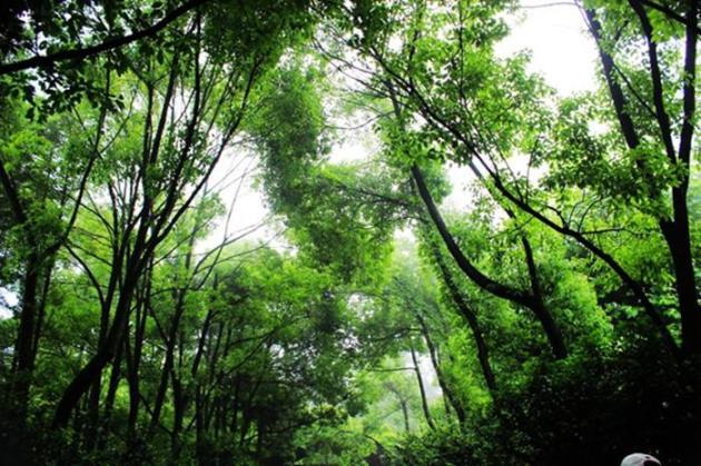 桐庐旅游必去的景点垂云通天河这么美的地方你想和谁去?