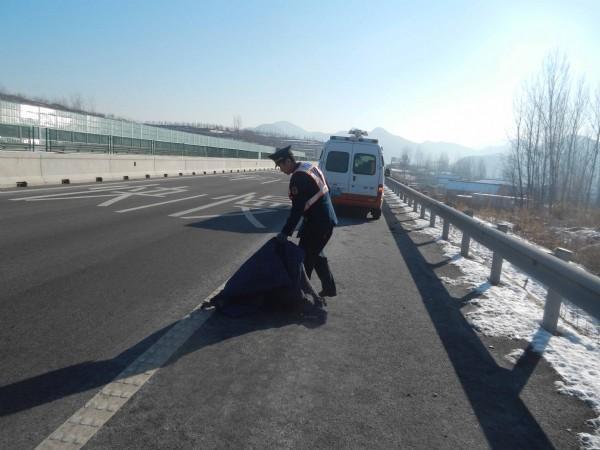 高速遇到障碍物,是撞上去还是紧急避让?这样做最保险!