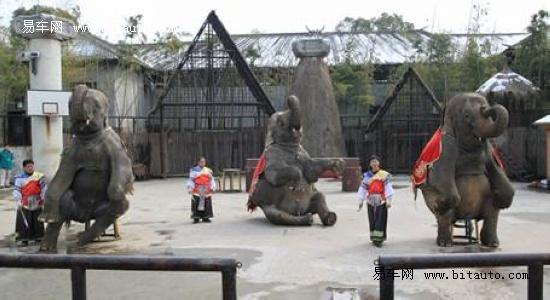 畅游西塘杭州野生动物园
