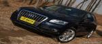 奥迪Q5/新捷达 2010最值得关注十款新车