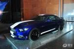 Shelby GTE亮相国内 以平行进口方式引进