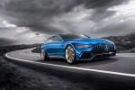 奔驰AMG GT旅行版假想图曝光 采用四门设计  ?