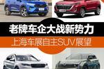 老牌车企大战新势力 上海车展自主SUV看点全在这了