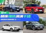 Model 3/ES6/Aion LX/小鹏G3 新能源直播选车问题精选(一)