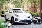 路咖EV:在美国咬牙赔钱的韩系电动车 为什么还不来中国?