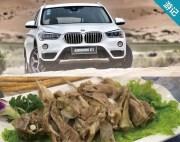 舞动沙漠之光 新BMW X1带你游大漠