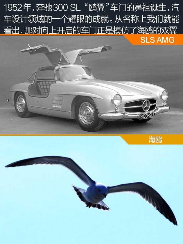 汽车设计中的仿生学 来自大自然的神秘力量