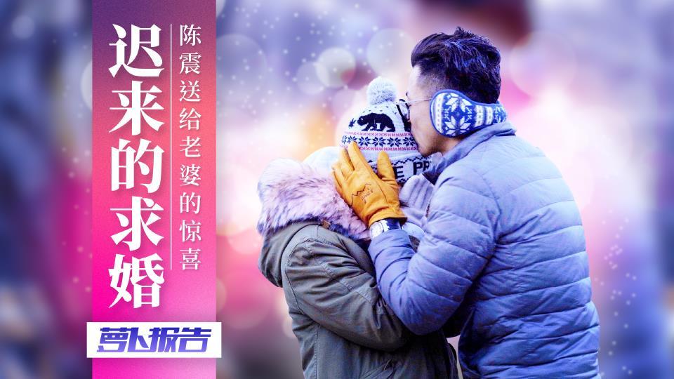 迟来的求婚,陈震送给老婆的惊喜(下)