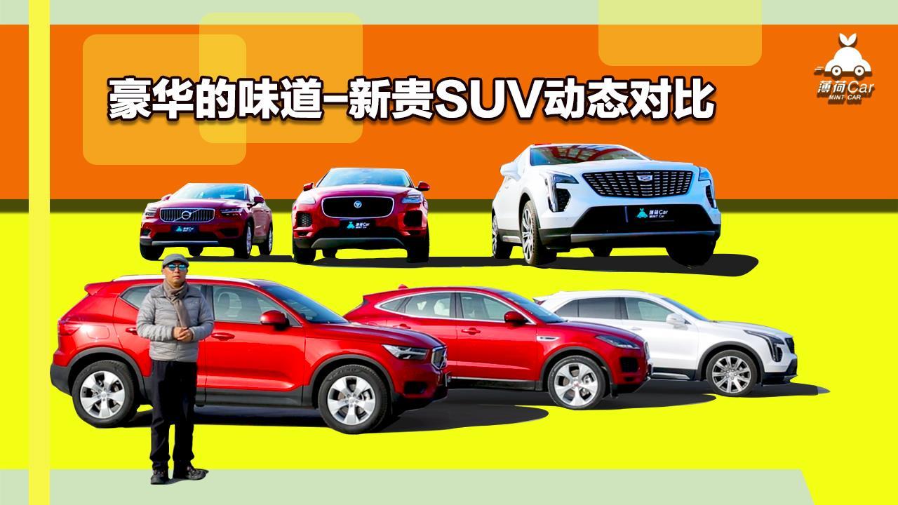 薄荷Car:豪华的味道-新贵SUV动态对比