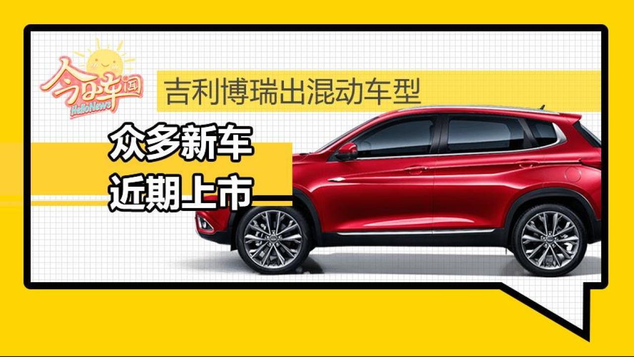 宝马X7及25款新车揭秘 长城WEY设计师跑路