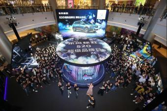 """东风标致超级品牌日:如何向255万""""狮粉""""表白?"""