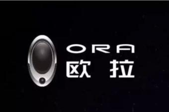 欧拉品牌发布会,宁述勇都讲了哪些干货?