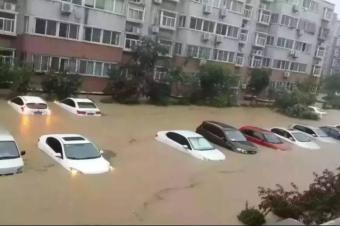 """一场台风,揭开了新能源车的又一块""""遮羞布""""!"""