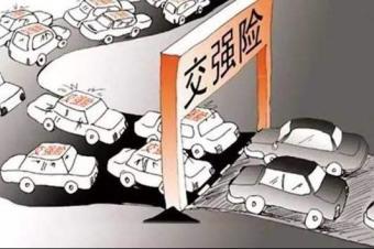 买了第三者、车损和不计免赔,哪些状况保险公司不理赔?
