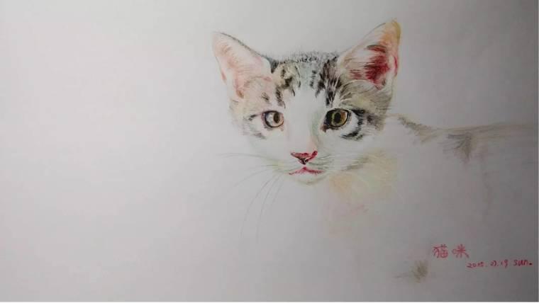 sketch 设计师反馈网友手绘图,欢迎更多网友分享出自己的作品