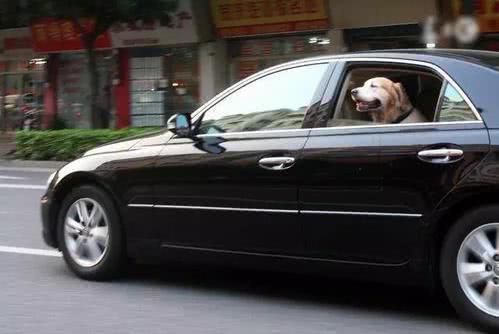 老司机开车只开一扇窗,这是为什么?原因耐人寻味