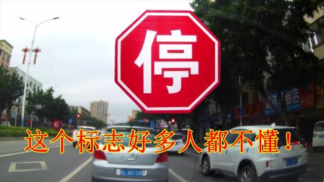 开车竟不认识这个交通标志?十几年老司机也不懂,小心做错负全责
