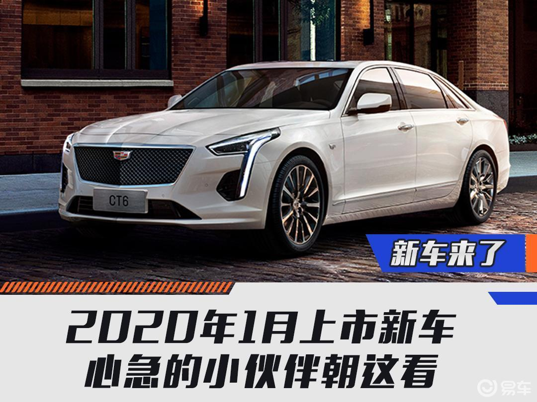 2020年1月上市新车  心急的小伙伴朝这看