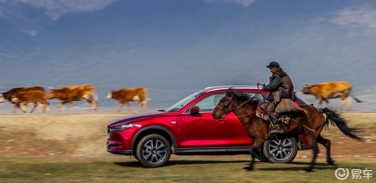个性和实用二者不可兼得?马自达CX-5:全面升级懂车之选