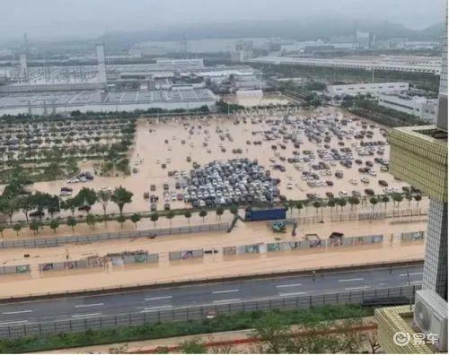 突发而来的一场暴雨,能否把广汽本田浇醒?