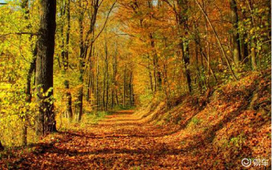 小知识|汽车秋季怎么保养?